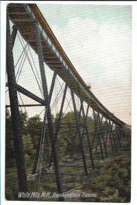 White Mountains, NH - Frankenstein Trestle - Misalignment on reverse