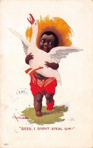 Bernhardt Wall Black Americana~Boy With Duck~I Didn't Steal Um!~#1661~1908 PC