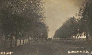 Hamilton ND Tree Lined Kid Avenue Horse & Wagon RPPC Postcard