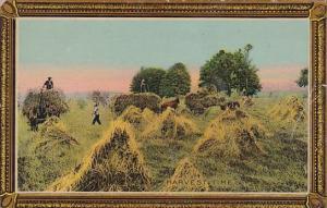 Harvesting Time Scene 1914