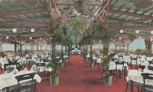 PHILADELPHIA, Pennsylvania, PU-1911; Bingham Roof Garden