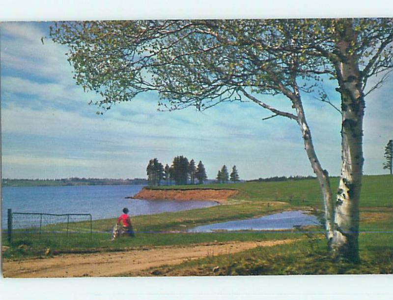 Pre-1980 TOWN VIEW SCENE Georgetown Prince Edward Island PE o0115
