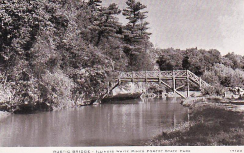 Illinois White Pines Forest State Park Rustic Bridge