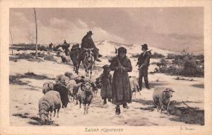 Saison rigoureuse S. Bruzzi, severe season