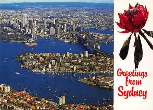 Australia Greetings from Sydney Harbour Kirribilli Boats Panorama Postcard