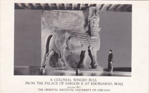 Iraq Colossal Winged Bull From Palace Of Sargon II At Khorsabad Photo