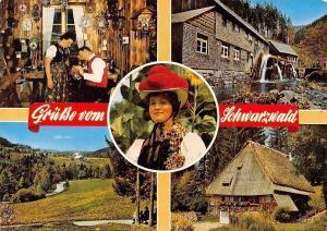 Gruesse vom Schwarzwald Muehle, Haus House Mill Panorama