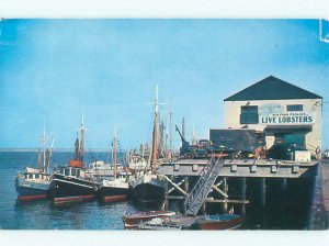 Pre-1980 LIVE LOBSTERS FOR SALE SIGN ON SHOP Cape Cod - Provincetown MA AF4448
