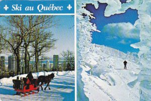 Winter Fun On Mount Royal Montreal Quebec Canada