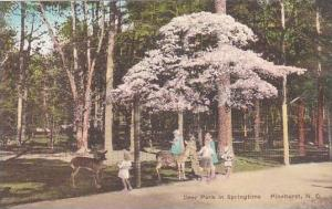 North Carolina Pinehurst Deer Park In Springtime Albertype