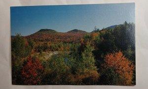 Postcard Ammonoosuc River Twin Mountain 1988 New Hampshire Autumn Color 2025