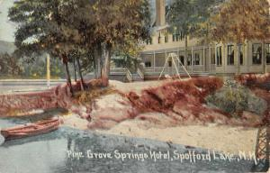 Spofford Lake New Hampshire Pine Grove Springs Hotel Antique Postcard K92591