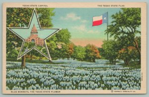 Texas~State Capitol in Star~State Flag~State Flower~Blue Bonnets~Postcard