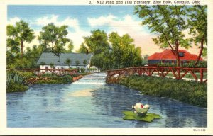 Ohio Castalia Blue Hole Mill Pond aand Fish Hatchery Curteich