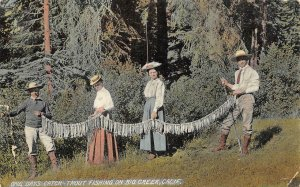 One Day's Catch Trout Fishing On Big Creek, CA 1909 Vintage Postcard
