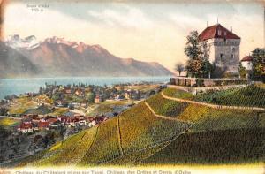 Switzerland Dents d'Oche Chateau de Chatelard Statue Monument Castle Postcard