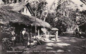 Sri Lanka Ceylon Colombo Boralesgamuwa Typical Rural Scene Real Photo sk4099