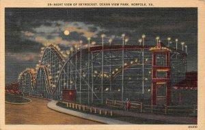 LPS08 Norfolk Virginia Ocean View Amusement Park Roller Coaster Postcard