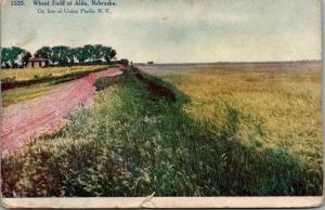 Alda Nebraska~Wheat Field Across Farm House~Union Pacific Railroad Line~c1910 PC