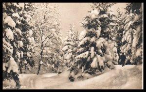 Harz in Winter,Germany BIN