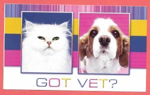 Cat and Dog - Got Vet? Used