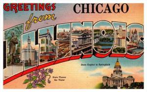 10551  IL  Chicago  LARGE LETTER