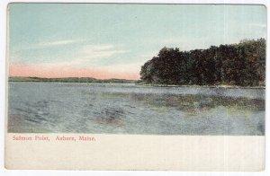 Auburn, Maine, Salmon Point