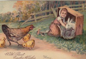EASTER, 1900-10s; Hen & chicks watching girl helping rabbit in box, PFB 8995