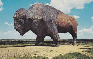 Giant Buffalo Monument - Jamestown ND, North Dakota