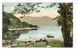 At Innisfallen, Killarney, Ireland, 1900-1910s
