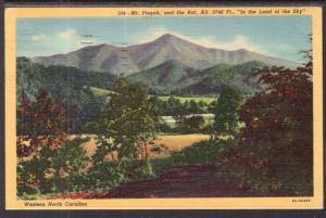 Mt Pisgah and the Rat,Western North Carolina BIN