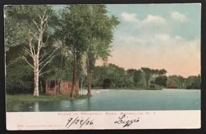 Scene in Prospect Park Brooklyn NY 1906 Illustrated Post Card Co 2001