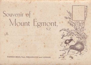 Souvenir Of Mount Egmont New Zealand Antique Folding Postcard Book