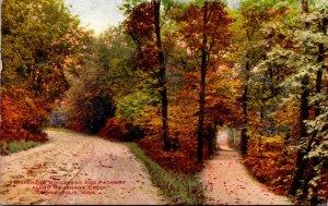 Minnesota Minneapolis Minnehaha Boulevard and Pathway Along Minnehaha Creek 1910