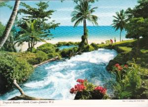 Jamaica North Coast Tropical Beauty