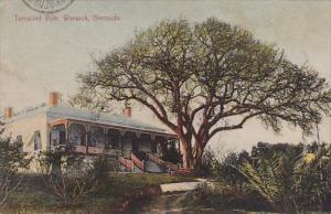 Bermuda Warwick Tamarind Vale