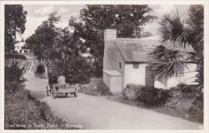 Bermuda Road Scene In Smith Parish Real Photo
