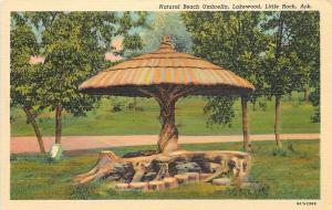 Little Rock Arkansas~Lakewood~Natural Beach Umbrella Tree~1938 Roadside PC