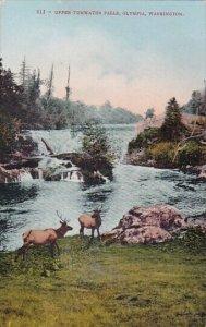 Upper Tumwater Falls Olympia Washington