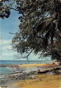 BF659 la plage au cap esterias  Gabon africa