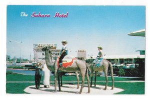 Las Vegas NV Sahara Hotel Camels Tourists Vintage 1950s Ferris Scott Postcard