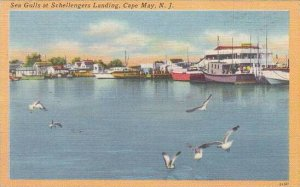 New Jersey Cape May Sea Gulls At Schellengers Landing 1950