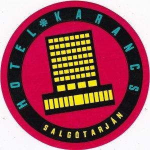 Hungary Salgotarjan Hotel Karancs Vintage Luggage Label sk3702