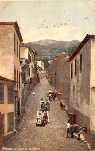 Spain Old Vintage Antique Post Card Carros de Monte Madira Unused