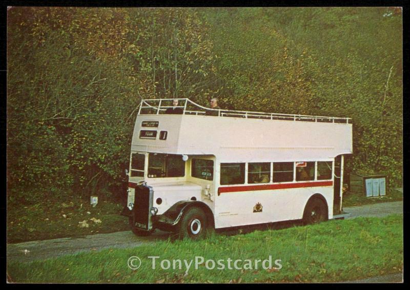Ivory Double -Deck Open Top Bus FTR 514