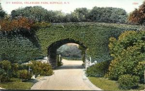 Buffalo NY, New York - Ivy Bridge at Delaware Park - pm 1909 - DB