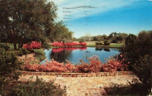 Postcard Sylvan Abbey Between Clearwater and Safety Harbor Florida