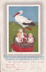 Birth Stork With Babies On Roof In Nest 1913
