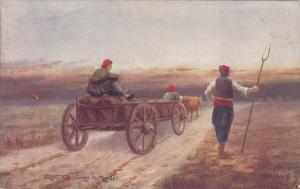 TUCK #7691, Village Life in ARMENIA, Going to Market, Bull-drawn wagon, 00-10s