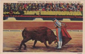 Mexico Bull Fight Getting The Bull Excited 1956 Curteich